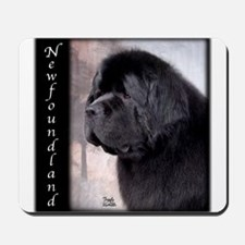 Newfoundlands Mousepad