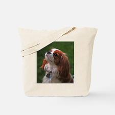 Cavalier Spaniel Tote Bag
