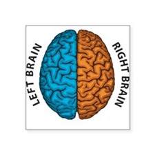 Right Brain vs Left Brain Sticker