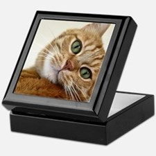 Sweet Cat Keepsake Box