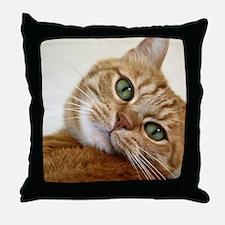 Sweet Cat Throw Pillow