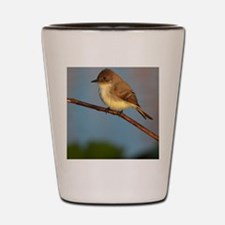 Phoebe on Stage Shot Glass