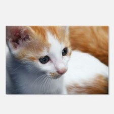 Sweet Cat Postcards (Package of 8)