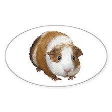 Guinea Pig Decal