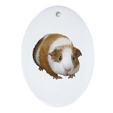 Guinea Pig Ornament (Oval)