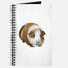 Guinea Pig Journal