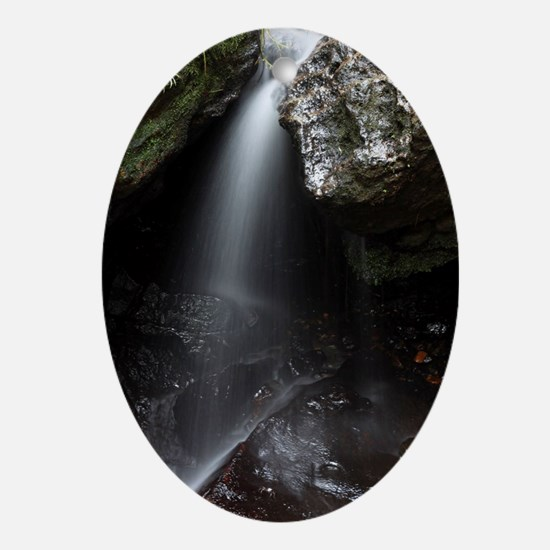 El Yunque National Forest Waterfall Oval Ornament