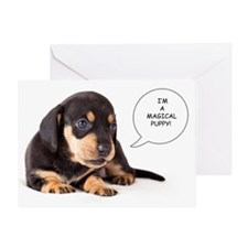 Dachshund Puppy Greeting Cards