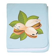pistachio baby blanket