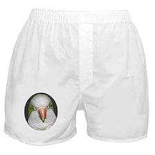 Quaker Portrait Boxer Shorts
