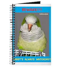 Quaker Parrot is watching Journal