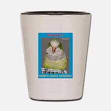 Quaker Parrot is watching Shot Glass