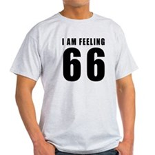 I am feeling 66 T-Shirt