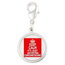 Stay Calm Chromosome Silver Round Charm