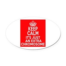Stay Calm Chromosome Oval Car Magnet