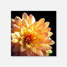 "Zinnia  Square Sticker 3"" x 3"""