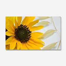 Sunflower with Wild Oats Car Magnet 20 x 12