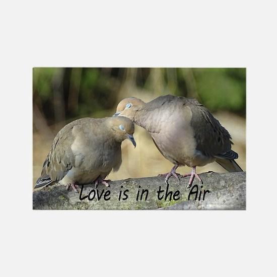 Love Birds Magnets