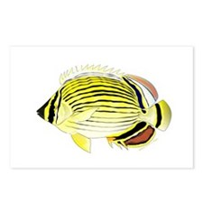 Oval Butterflyfish fish Postcards (Package of 8)