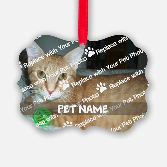 CUSTOMIZE Add Pet Photo And Name Ornament