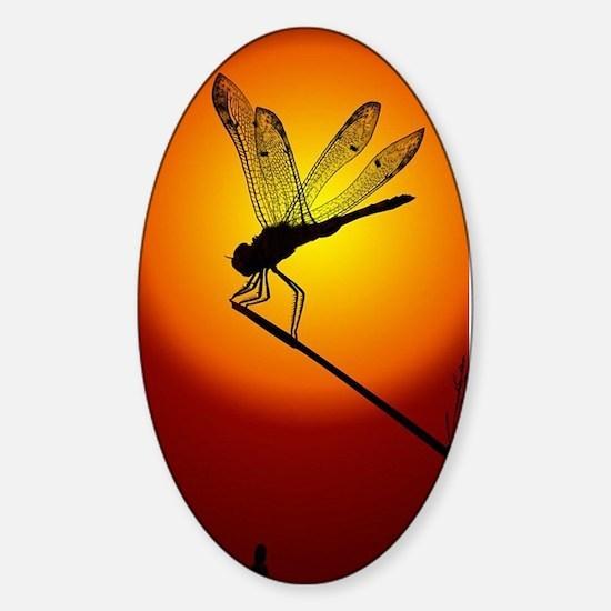 Sunset Dragonfly Sticker (Oval)