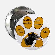 border collie walks Button