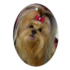 Yorkie Oval Ornament