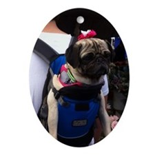 Bailey in backpack Oval Ornament