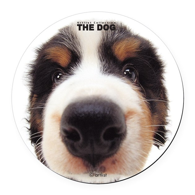 Bernese Mountain Dog Round Car Magnet by THEDOGandFriendsstore