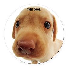 Labrador Retriever Round Car Magnet
