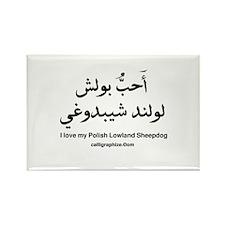Polish Lowland Sheepdog Rectangle Magnet (10 pack)