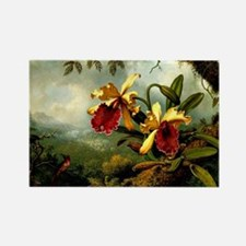 Orchids and Hummingbird, vintage  Rectangle Magnet