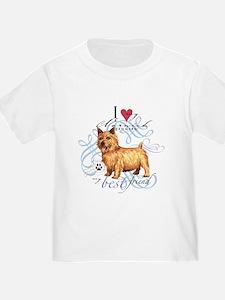 Norwich Terrier T