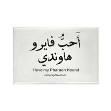 Pharaoh Hound Dog Arabic Rectangle Magnet (10 pack
