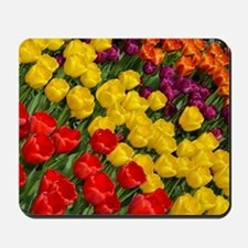 Colorful spring tulips in rows Mousepad