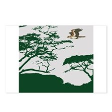 Flying Eagle Postcards (Package of 8)