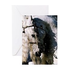 Andalusian Portrait Greeting Cards