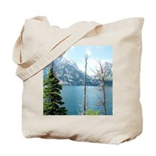 Grand Teton National Park. Landscape phot Tote Bag