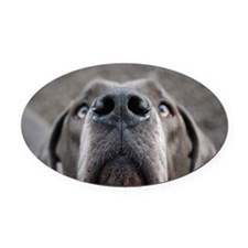 The Great Dane nose Oval Car Magnet