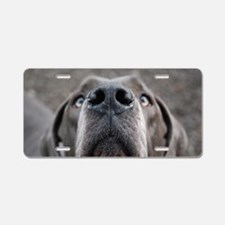 The Great Dane nose Aluminum License Plate