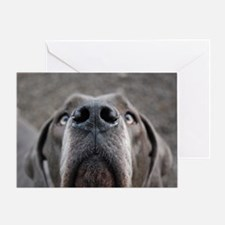 The Great Dane nose Greeting Card