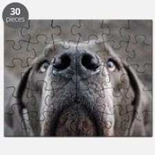 The Great Dane nose Puzzle