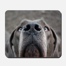 The Great Dane nose Mousepad