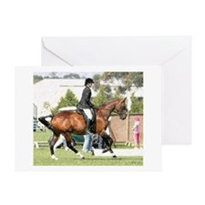 Anglo-Arabian Hunter Horse Greeting Cards