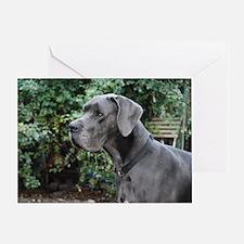 Blue Great Dane head Greeting Card