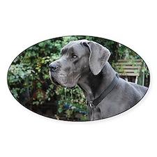Blue Great Dane head Decal