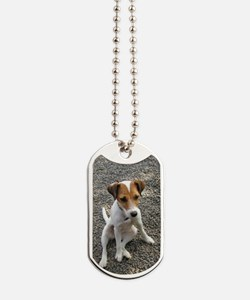 Parson Jack Russel  Dog Tags