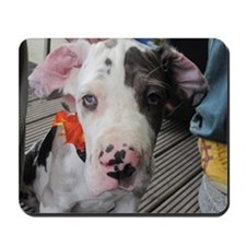 Dane Puppy Daisy Mousepad