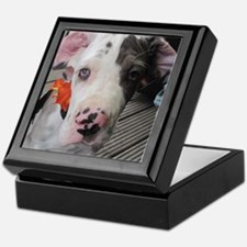 Dane Puppy Daisy Keepsake Box