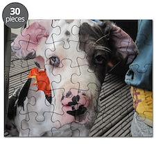 Dane Puppy Daisy Puzzle